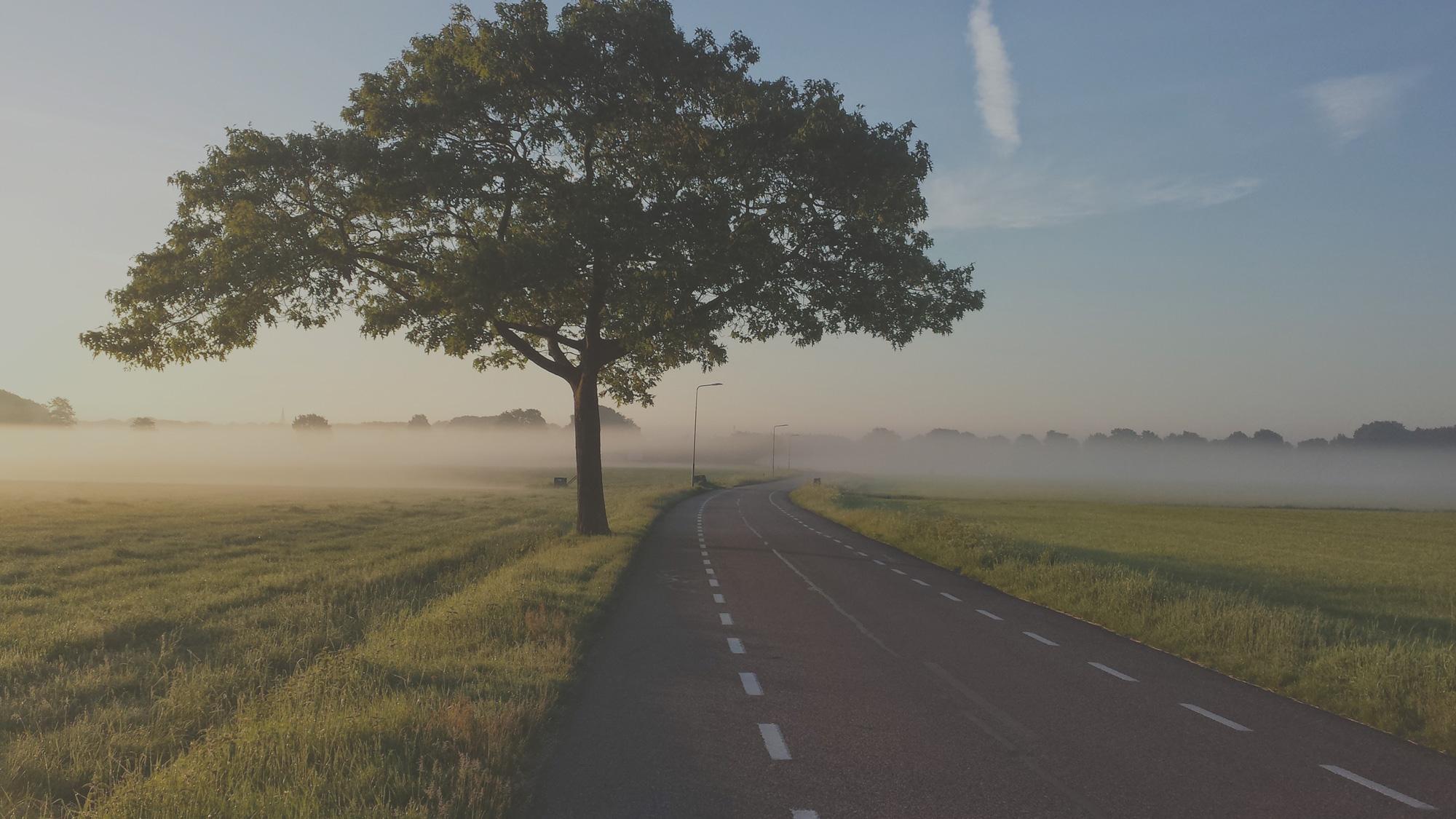 default image for Autobedrijf Curvers-Den Haag